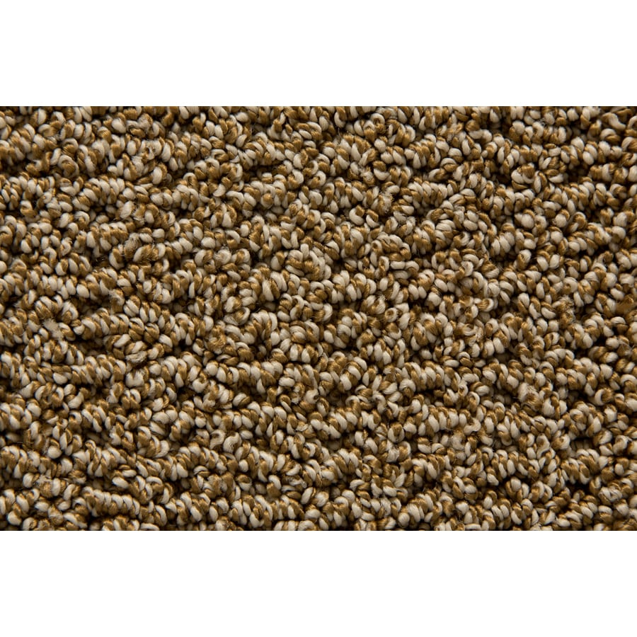 STAINMASTER TruSoft Merriment Bronze Pattern Indoor Carpet