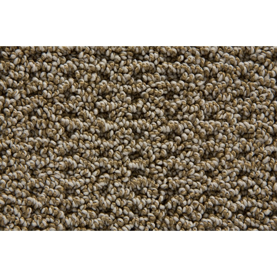 STAINMASTER TruSoft Merriment Sandstone Pattern Indoor Carpet