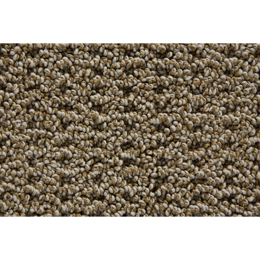 STAINMASTER TruSoft Merriment Sandstone Pattern Interior Carpet