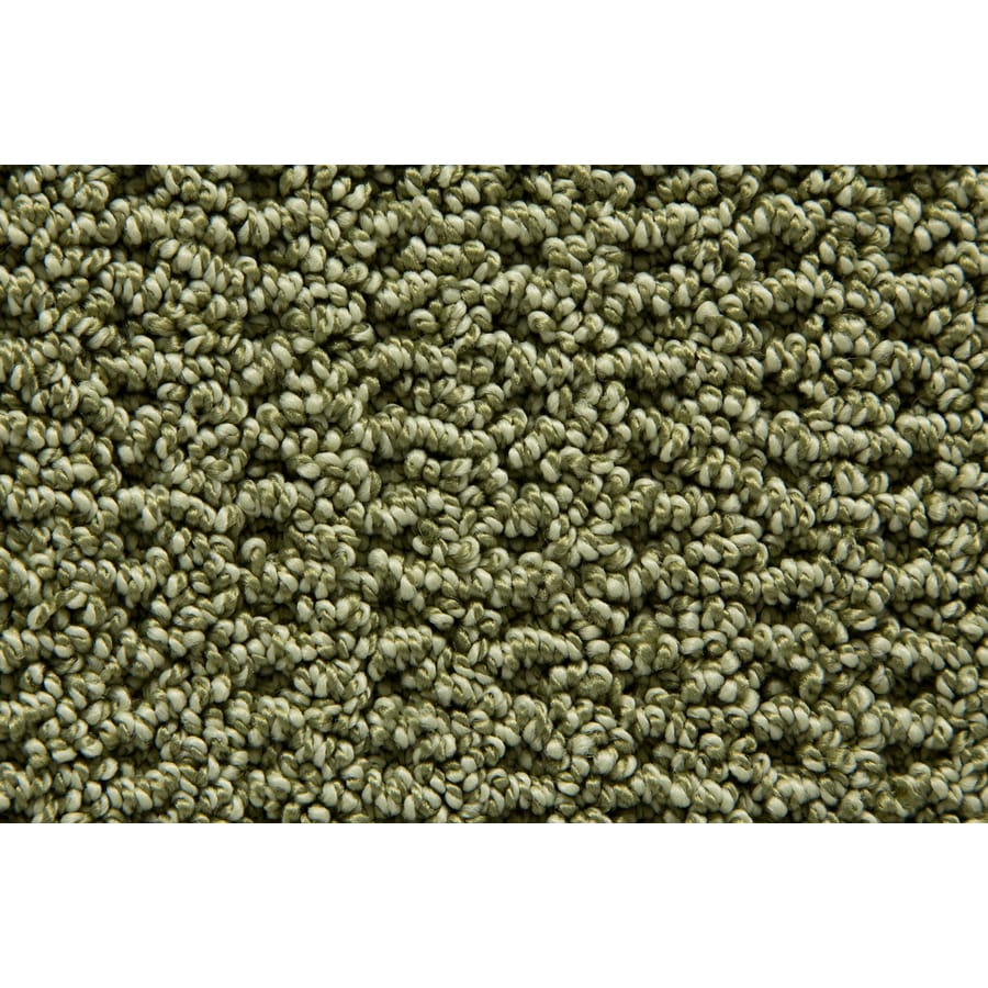 STAINMASTER Trusoft Merriment Reef Pattern Interior Carpet