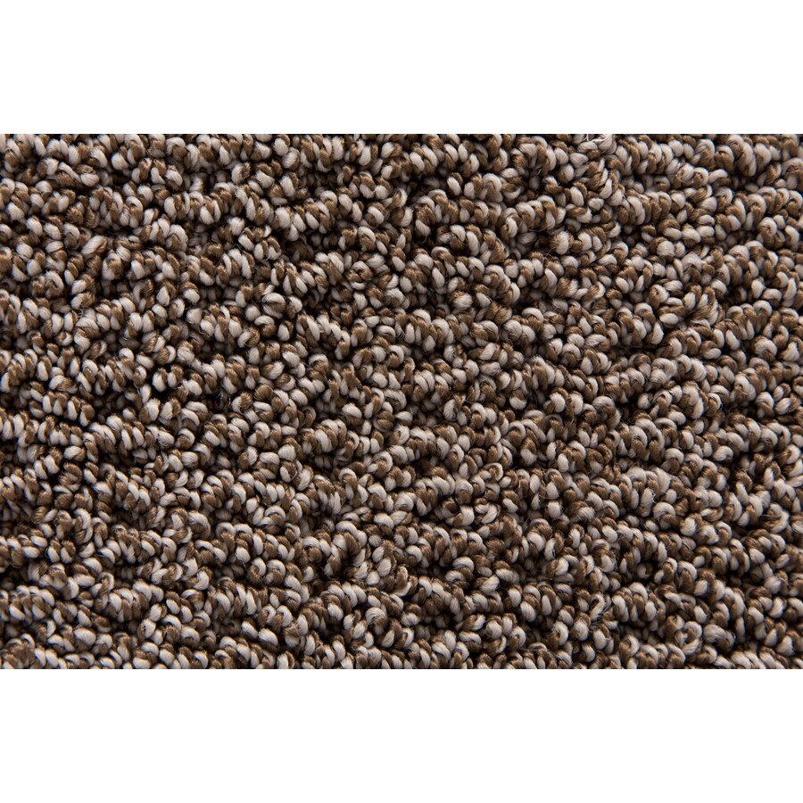 STAINMASTER TruSoft Merriment Burlwood Pattern Interior Carpet