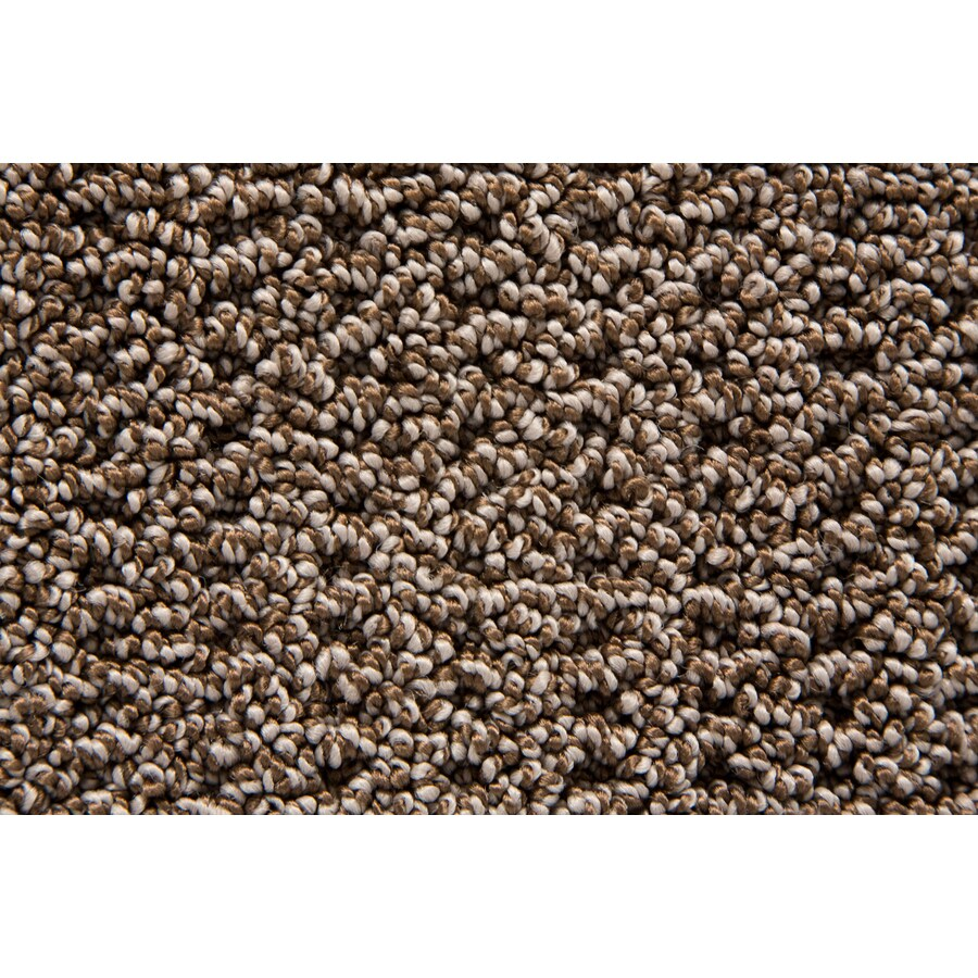 STAINMASTER Trusoft Merriment Pecan Pattern Interior Carpet