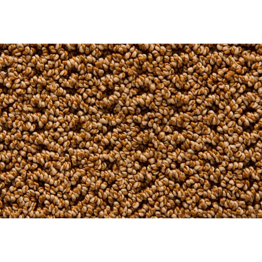 STAINMASTER TruSoft Merriment Sachet Pattern Interior Carpet