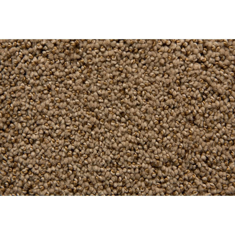 STAINMASTER TruSoft Mysterious Praline Pattern Indoor Carpet