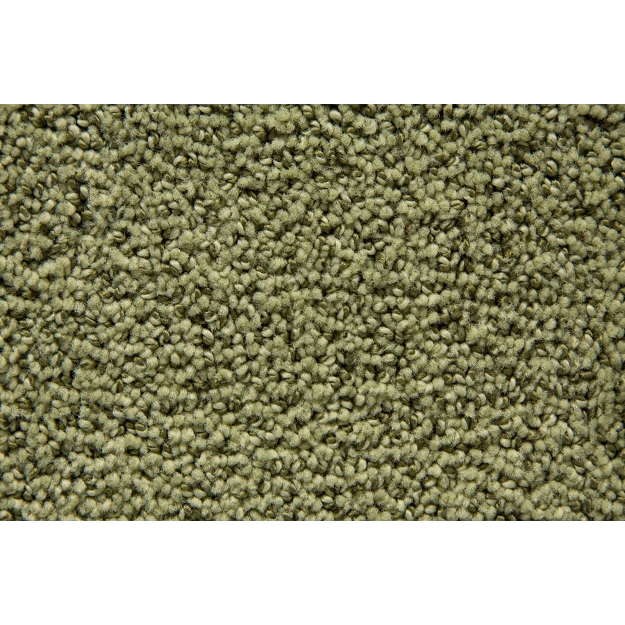 STAINMASTER TruSoft Mysterious Palmetto Pattern Indoor Carpet