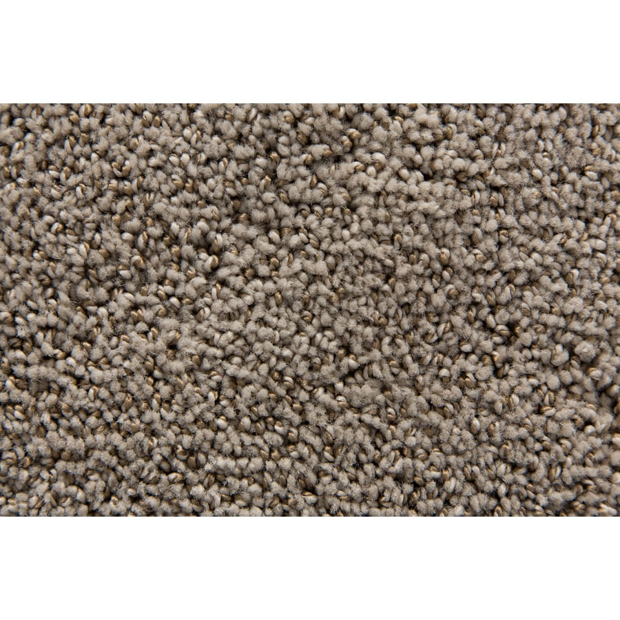 STAINMASTER TruSoft Mysterious Platinum Pattern Indoor Carpet