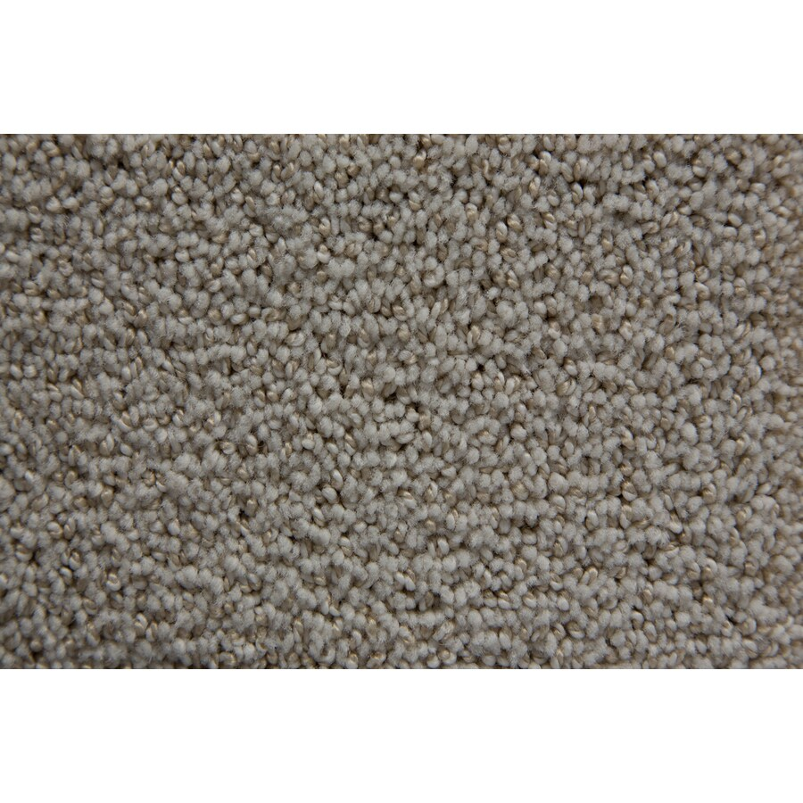 STAINMASTER TruSoft Mixology Celestial Pattern Indoor Carpet