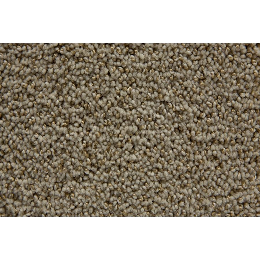 STAINMASTER TruSoft Mixology Puritan Pattern Interior Carpet