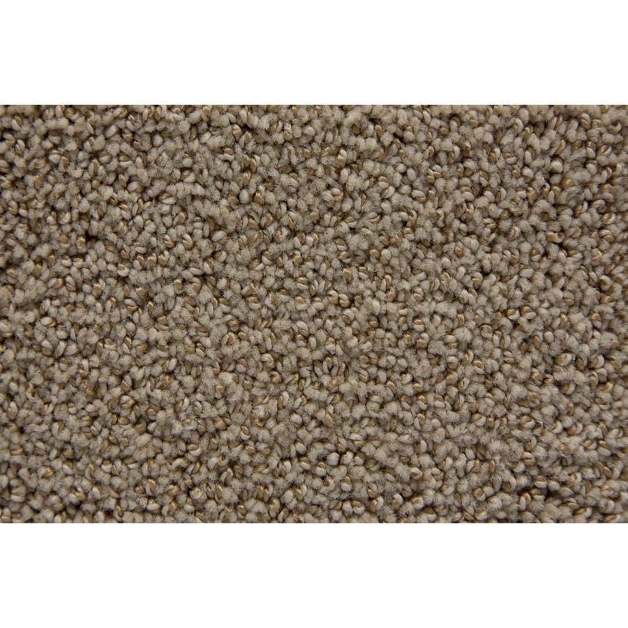 STAINMASTER TruSoft Mixology Chalk Pattern Interior Carpet