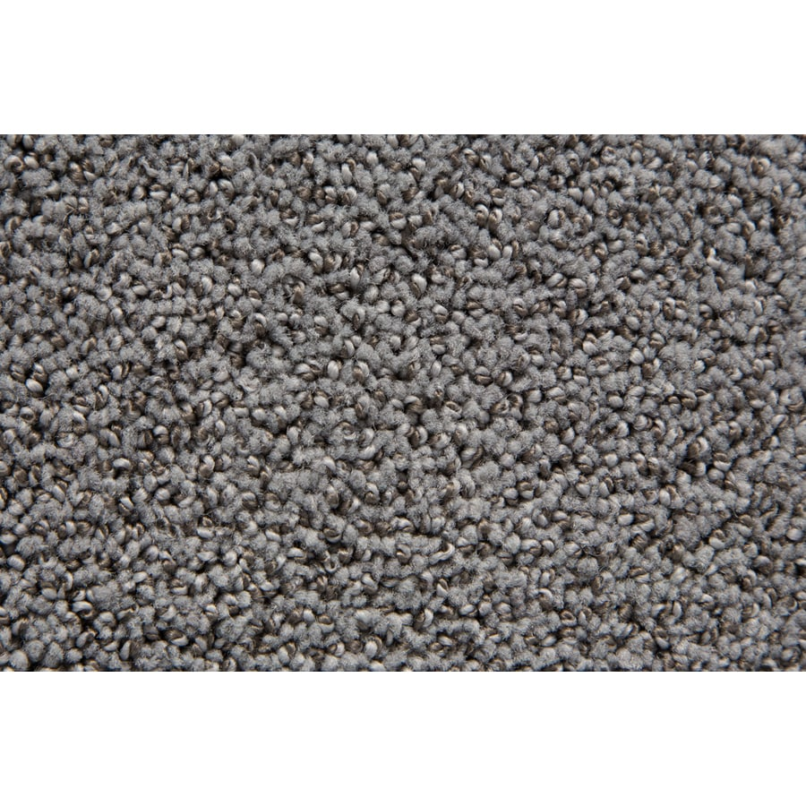 STAINMASTER TruSoft Mixology Moondance Pattern Indoor Carpet