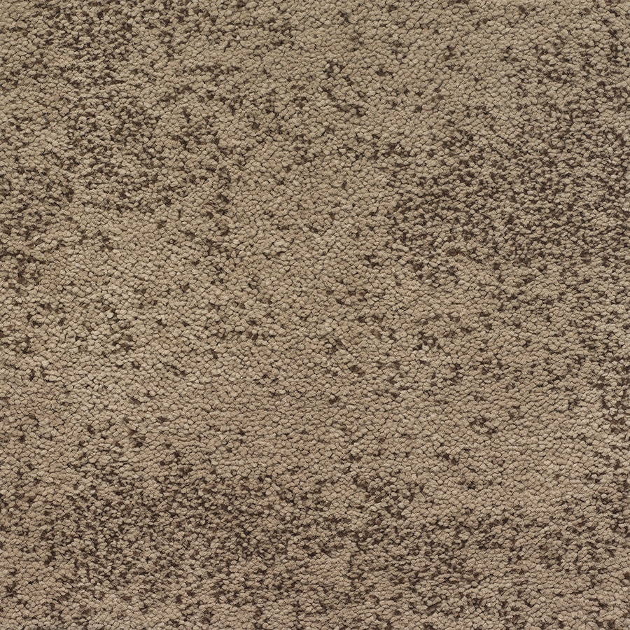STAINMASTER TruSoft Kasbah Fine Copper Pattern Indoor Carpet