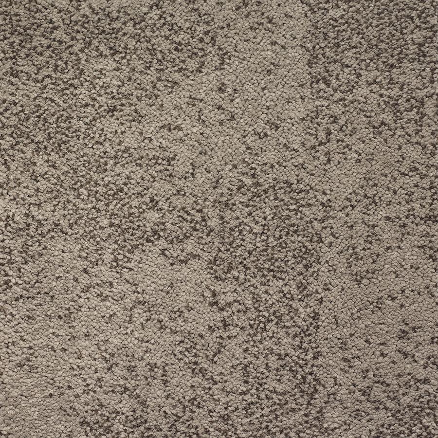 STAINMASTER TruSoft Kasbah Rich Velvet Pattern Indoor Carpet