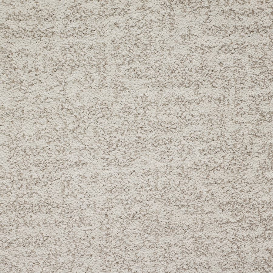 STAINMASTER TruSoft Espree Papyrus Pattern Indoor Carpet