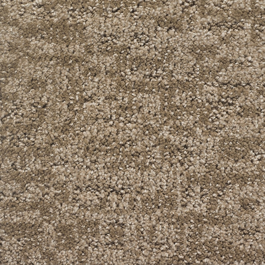 STAINMASTER PetProtect Duke Rover Pattern Indoor Carpet