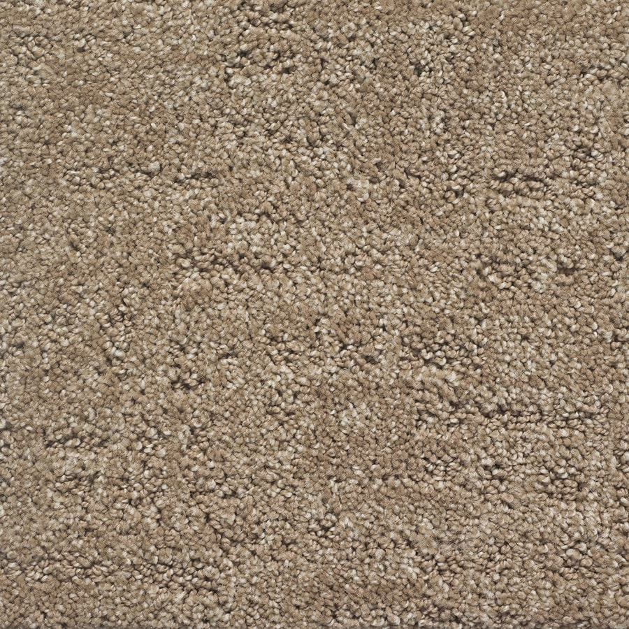 STAINMASTER PetProtect Duke Clifford Pattern Interior Carpet