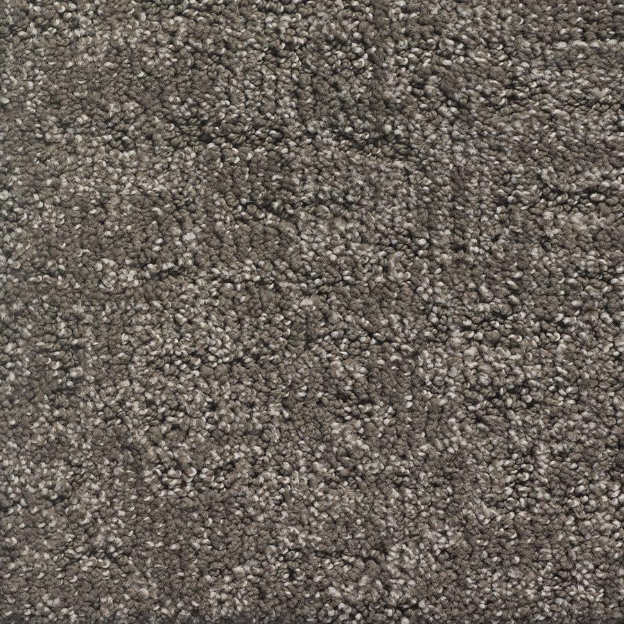 STAINMASTER PetProtect Duke Cujo Pattern Indoor Carpet