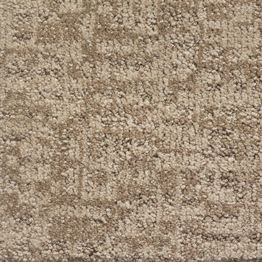 STAINMASTER PetProtect Duke Lassie Pattern Indoor Carpet