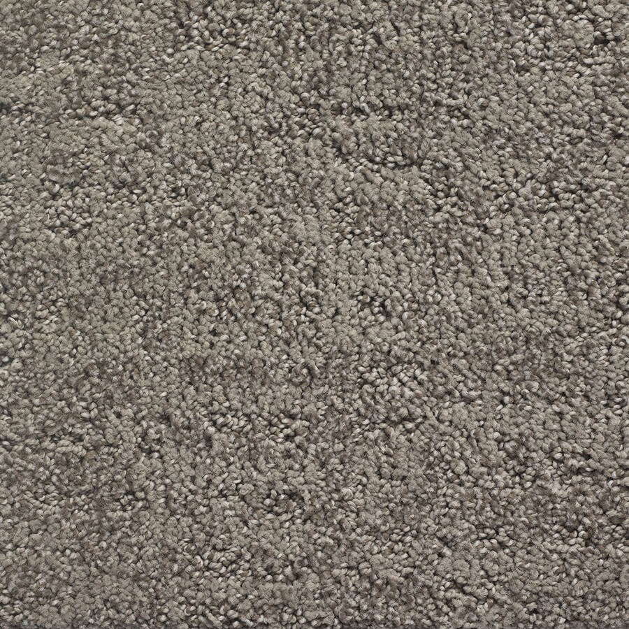 STAINMASTER PetProtect Duke Top Dawg Pattern Indoor Carpet