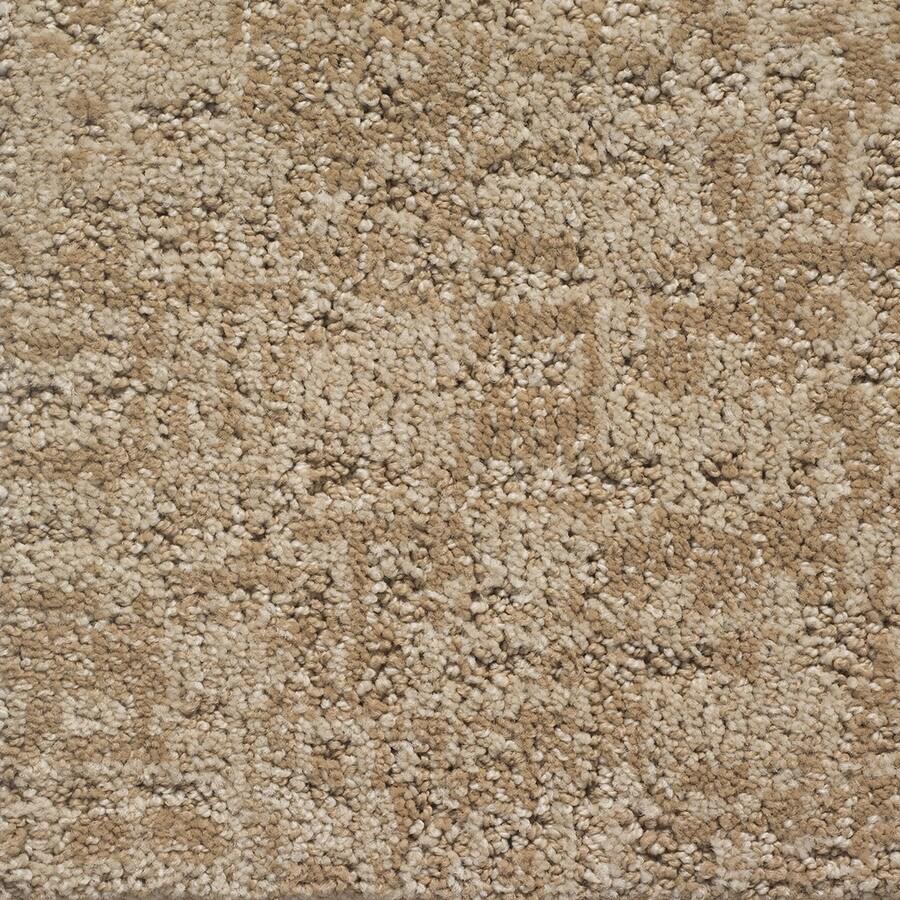 STAINMASTER PetProtect Duke Benji Pattern Indoor Carpet