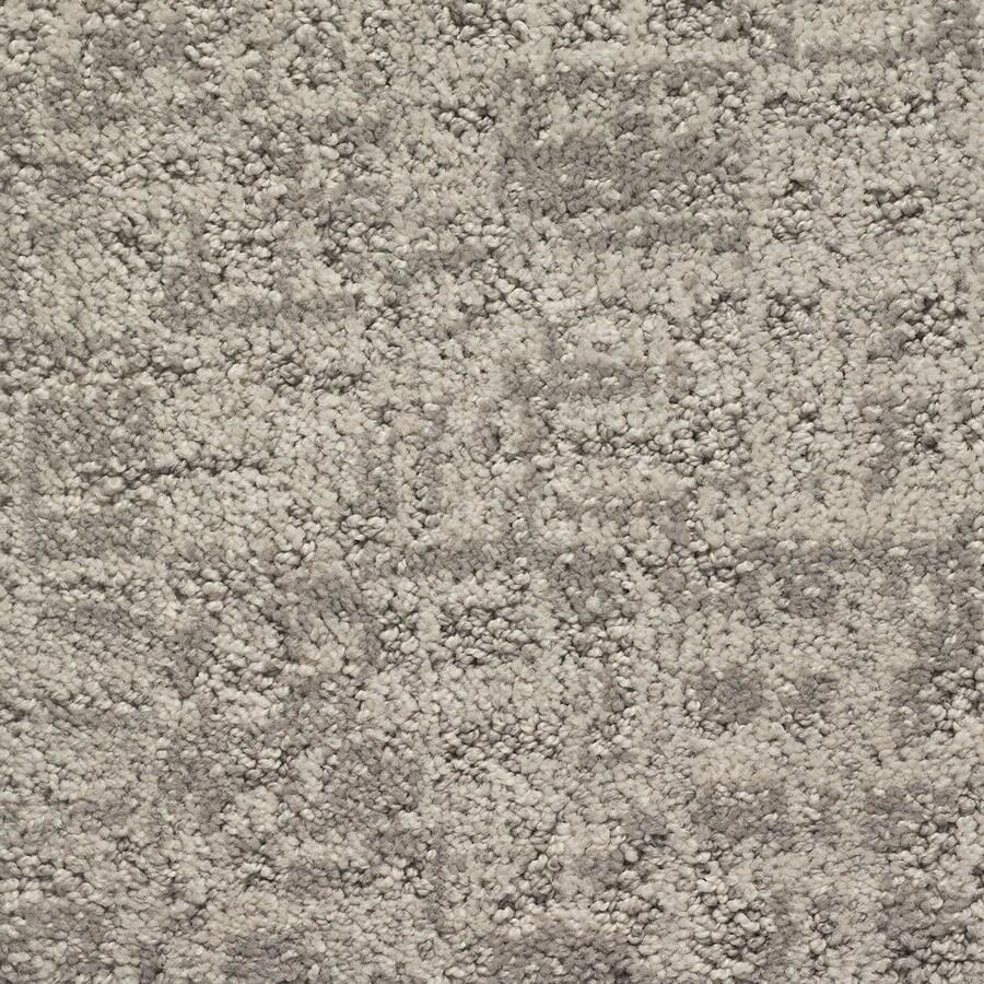 STAINMASTER PetProtect Duke Barkley Pattern Interior Carpet