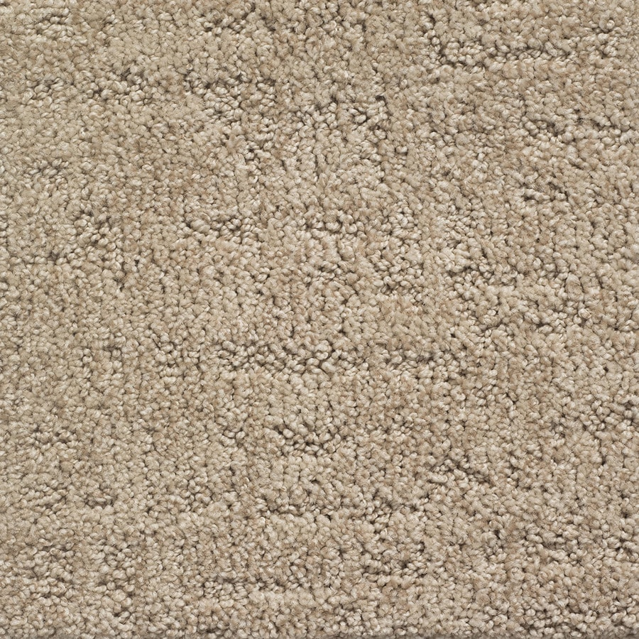 STAINMASTER PetProtect Duke Spot Pattern Indoor Carpet