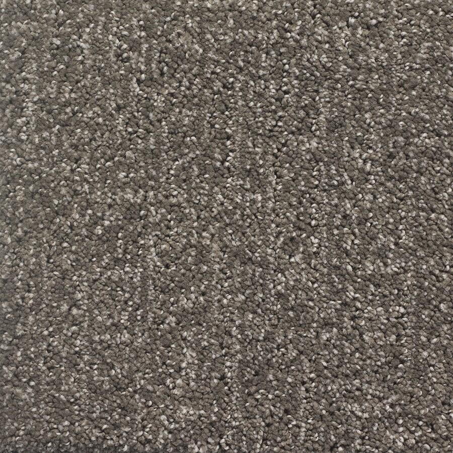 STAINMASTER PetProtect Duchess Cujo Pattern Indoor Carpet