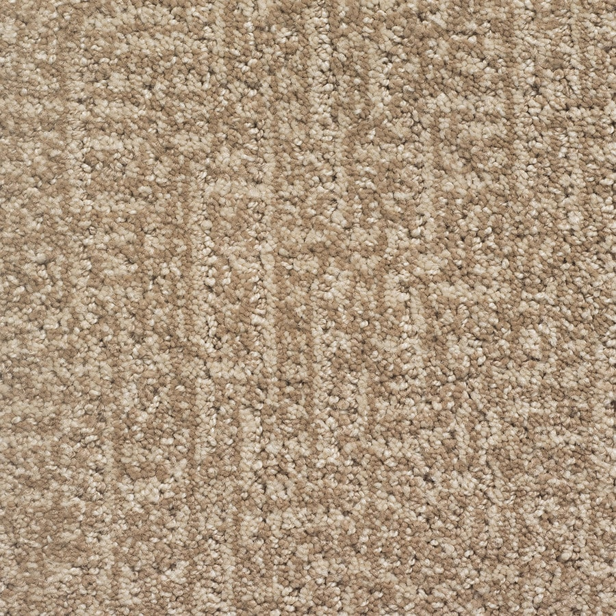 STAINMASTER PetProtect Duchess Lassie Pattern Indoor Carpet