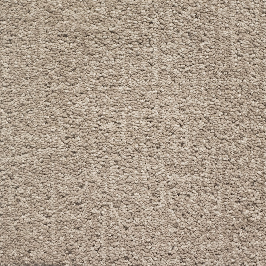 STAINMASTER PetProtect Duchess Fido Pattern Interior Carpet