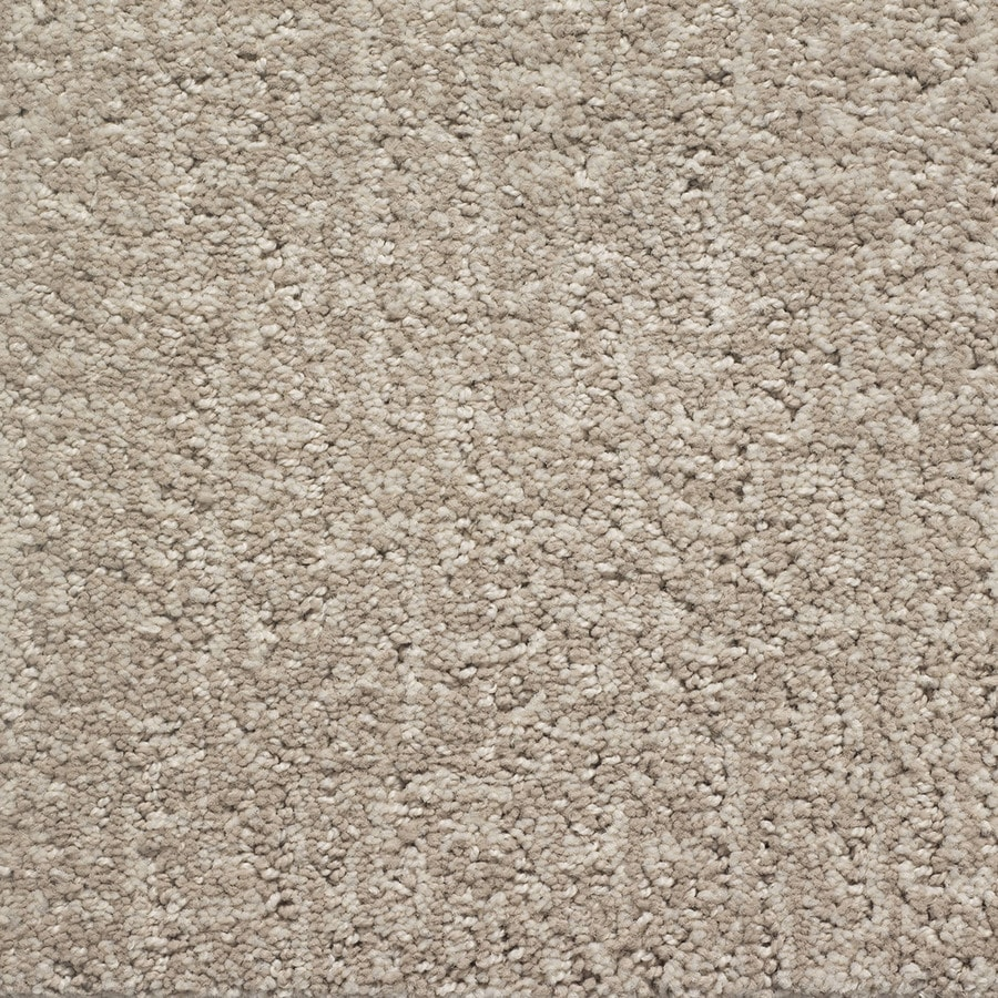 STAINMASTER PetProtect Duchess Toto Pattern Interior Carpet