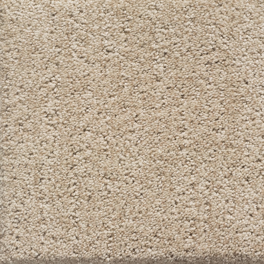 STAINMASTER PetProtect Duchess Spot Pattern Interior Carpet