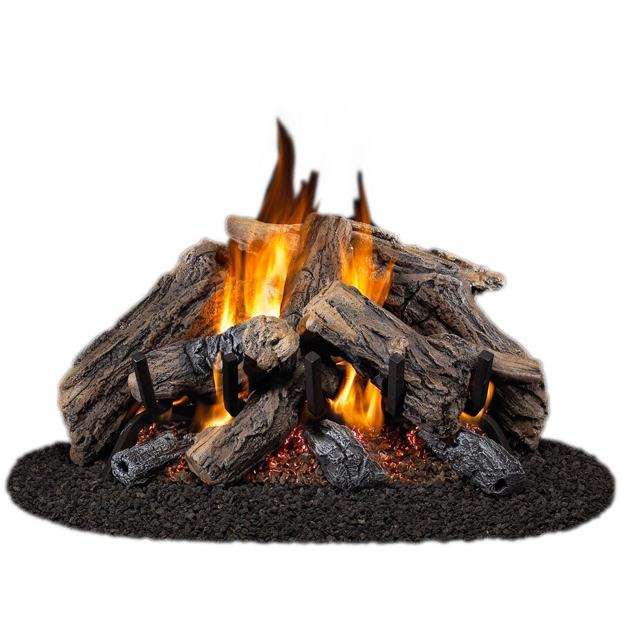 Shop Cedar Ridge Hearth 24-in 55,000-BTU Dual-Burner Vented Gas ...
