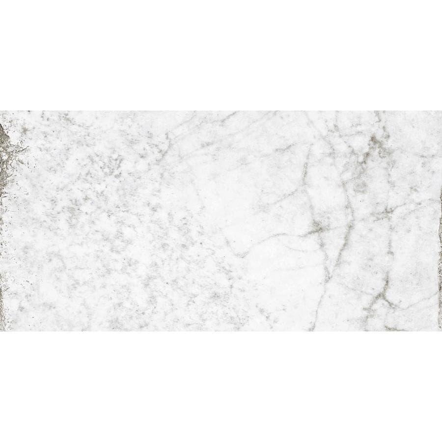 Del Conca Verdiana Bone Thru Body Porcelain Floor and Wall Tile (Common: 12-in x 24-in; Actual: 23.62-in x 11.81-in)