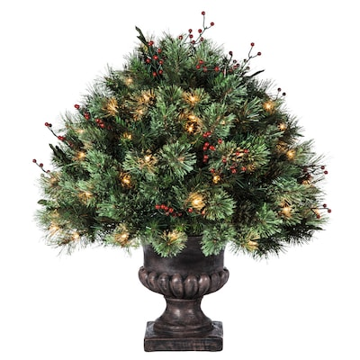 separation shoes 5c52b a41dc 2-ft Indoor/Outdoor Single Ball Topiary Pre-Lit Artificial Christmas Tree  with 70-Count Clear Incandescent Lights