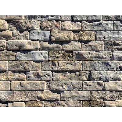 Natural Stone Veneer 1-sq ft Desert Sand Stone Veneer Panel ...