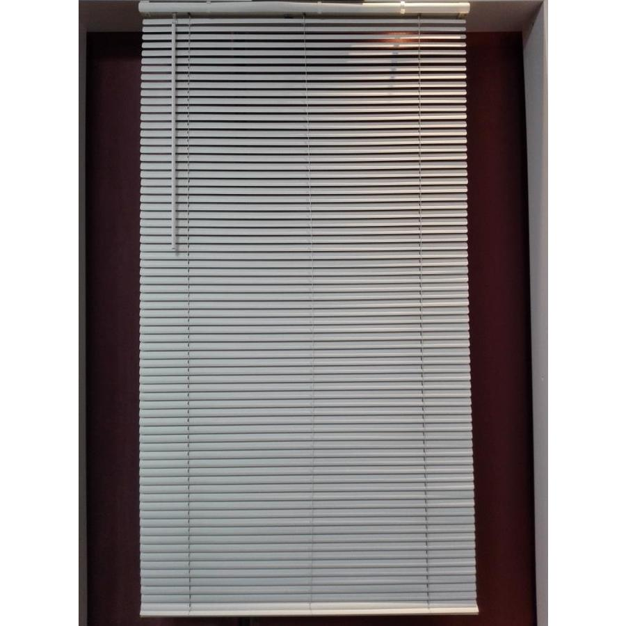 Project Source 1 In Cordless White Vinyl Light Filtering Mini Blinds