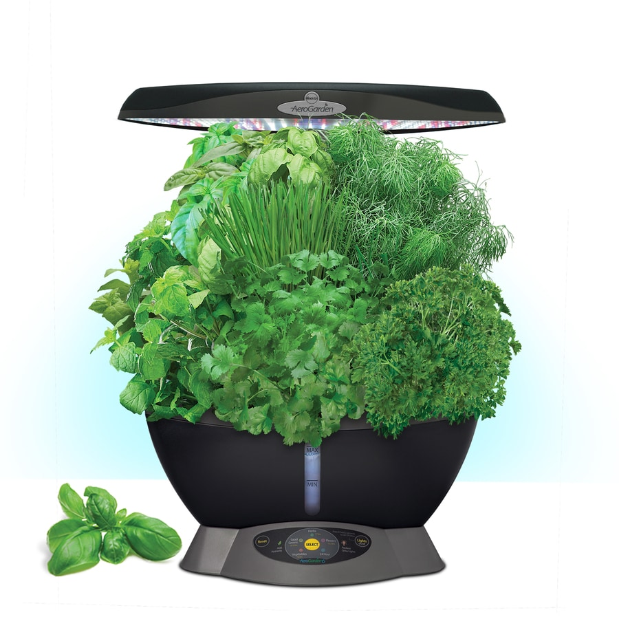 AeroGarden Classic 6 LED Hydroponic System (12-in Maximum Plant Growth Height)