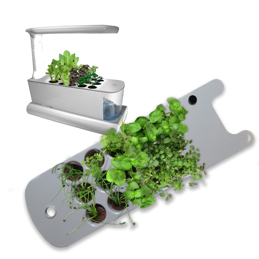 AeroGarden Sprout Seed Starting System