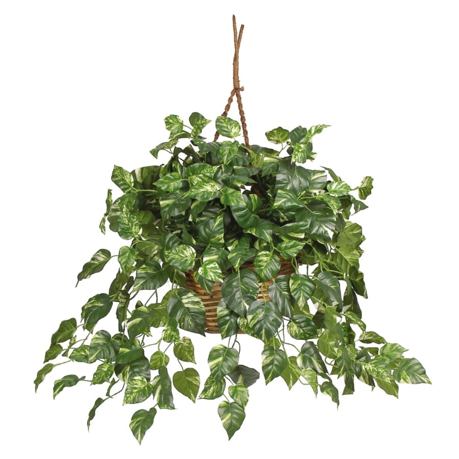 Nearly Natural 26-in Green Pothos