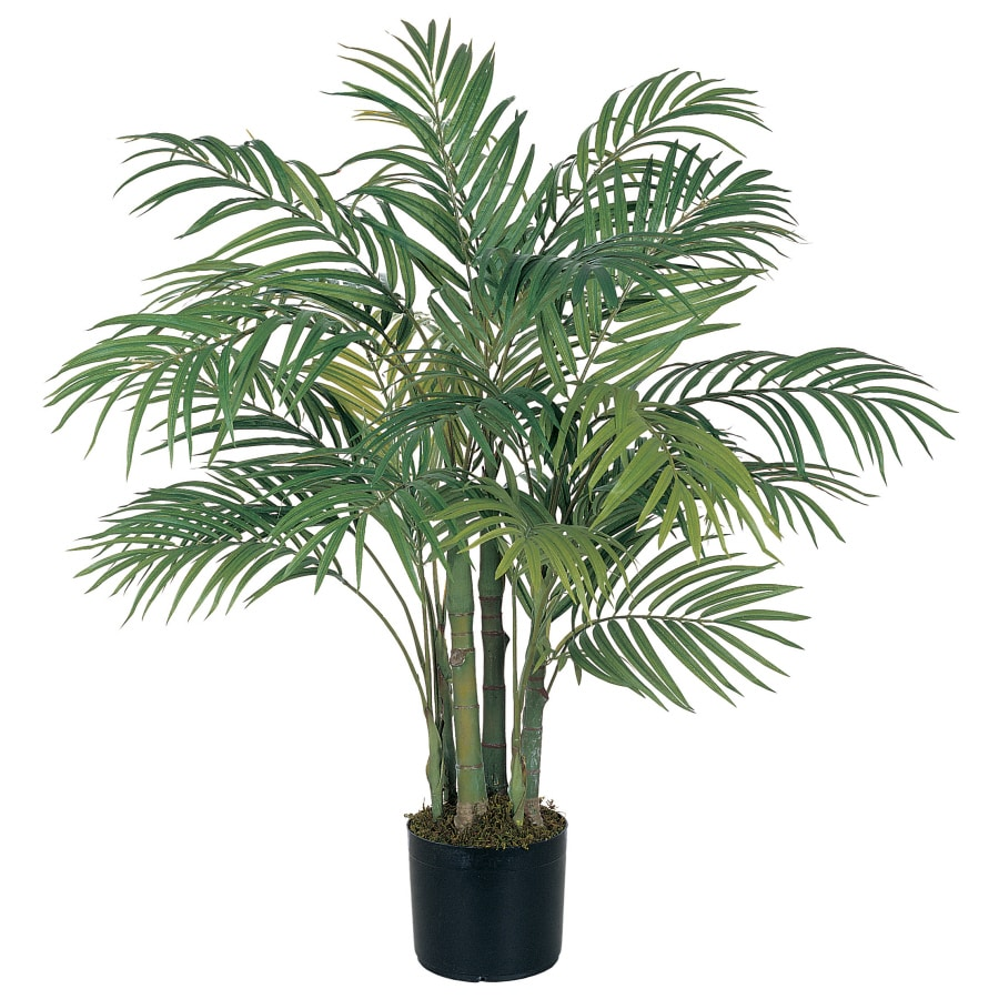 Shop Nearly Natural 36-in Green Palm Tree at Lowes.com. Shop Nearly Natural 36 In Green Palm Tree At Lowes Com  sc 1 st  Halloween Ideas & Collection Palm Christmas Tree Lowes Pictures - Halloween Ideas azcodes.com