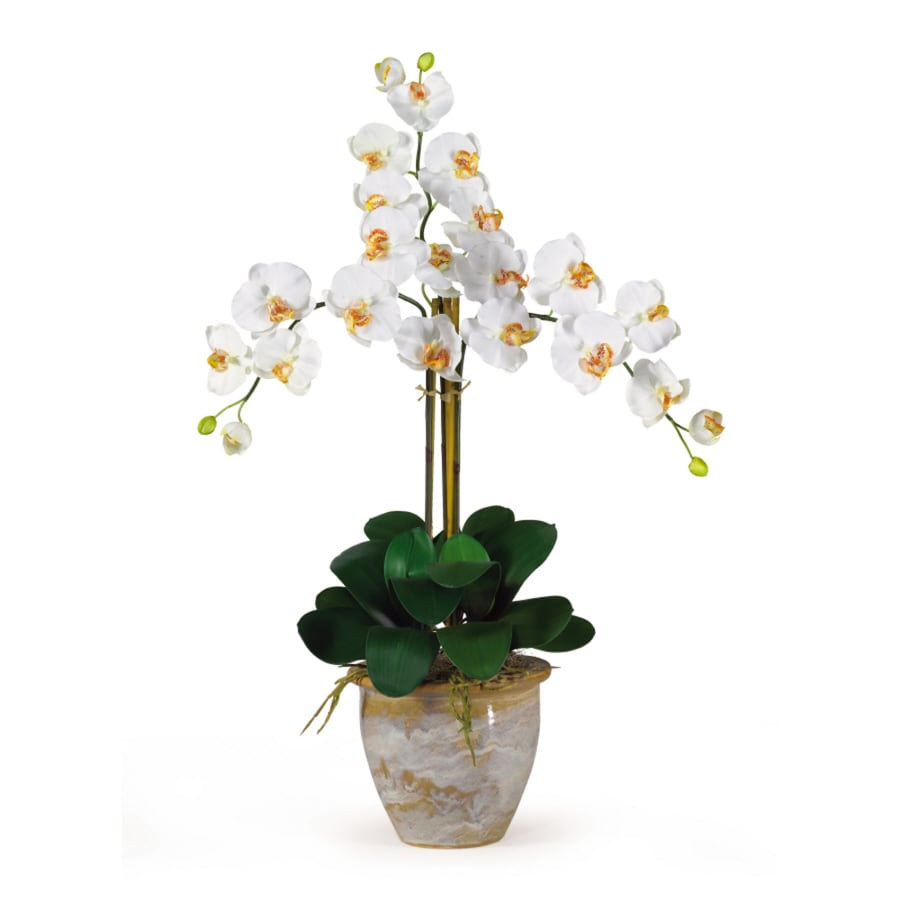 Nearly Natural 27-in Cream Phalaenopsis