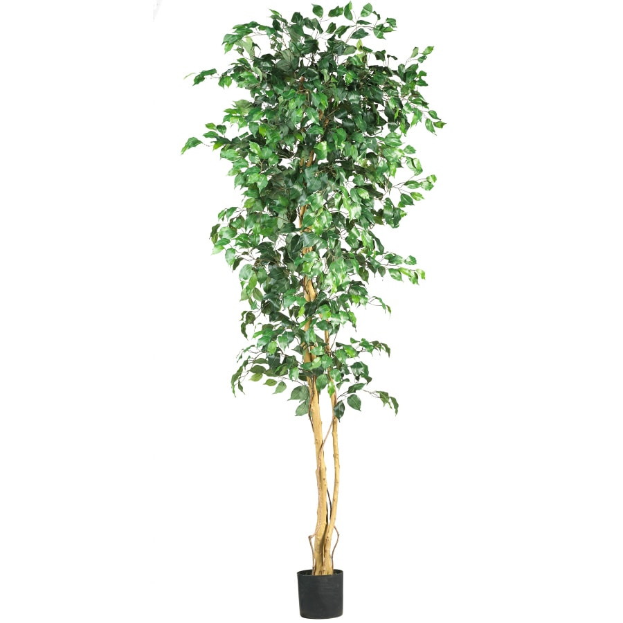 nearly natural 84in green ficus tree - Ficus Trees