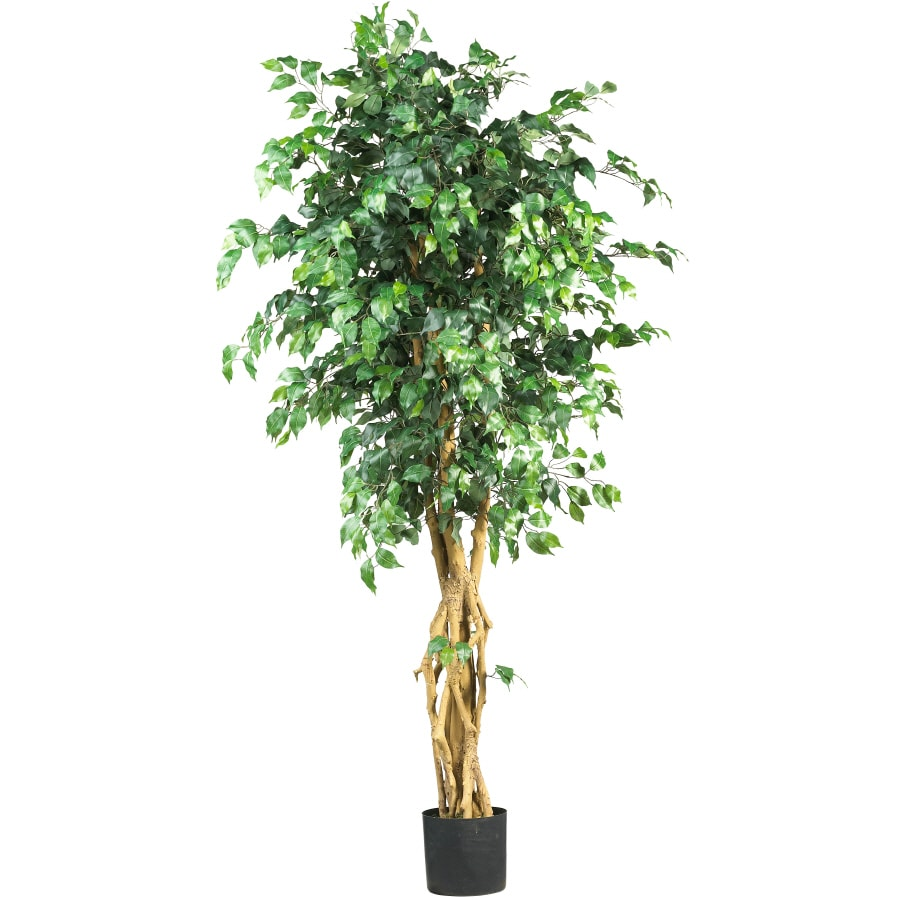 Nearly Natural 72-in Green Ficus