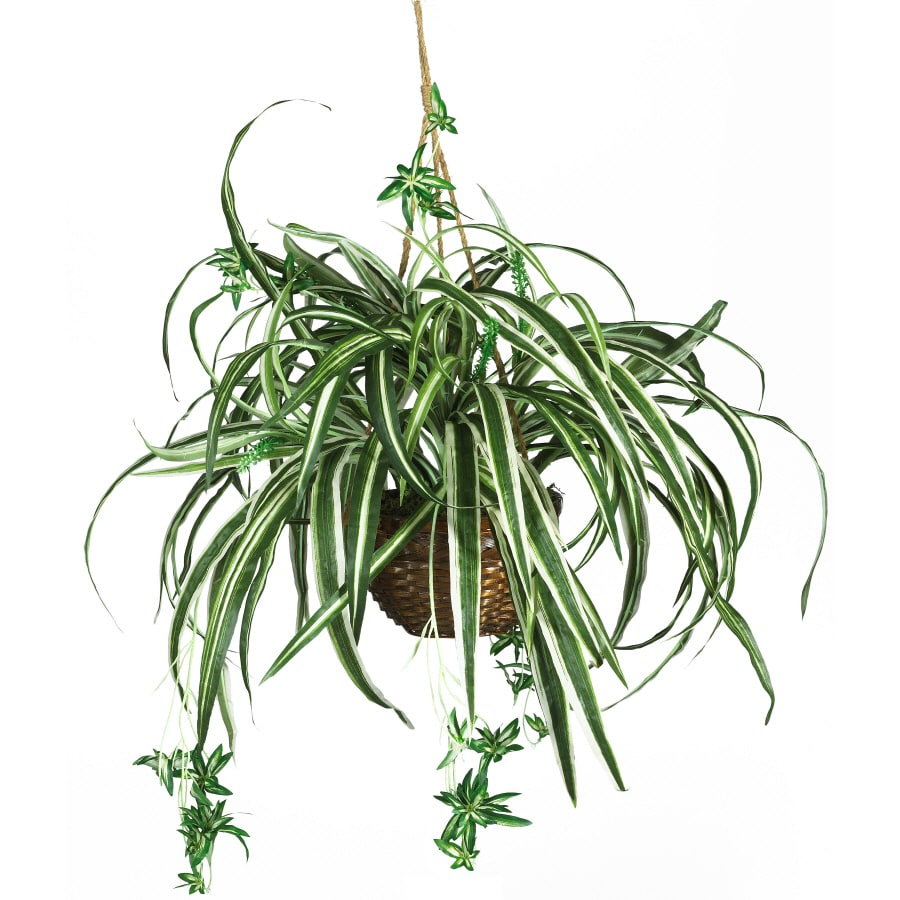 Nearly Natural 26-in Green Spider Hanging