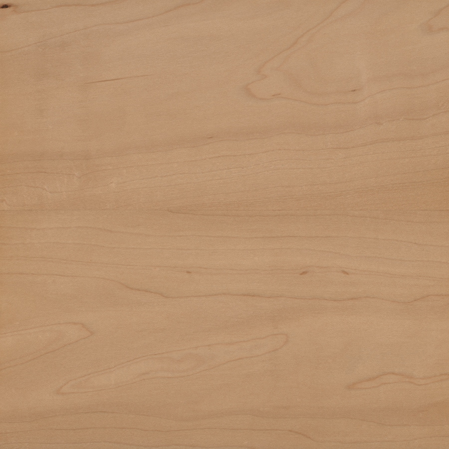 allen + roth Hard Maple Wood Kitchen Countertop Sample