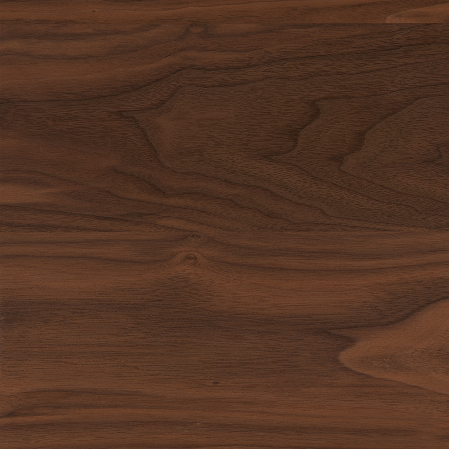 allen + roth Black Walnut Wood Kitchen Countertop Sample