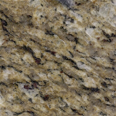 Allen + roth Santa Cecilia Granite Kitchen Countertop Sample ...
