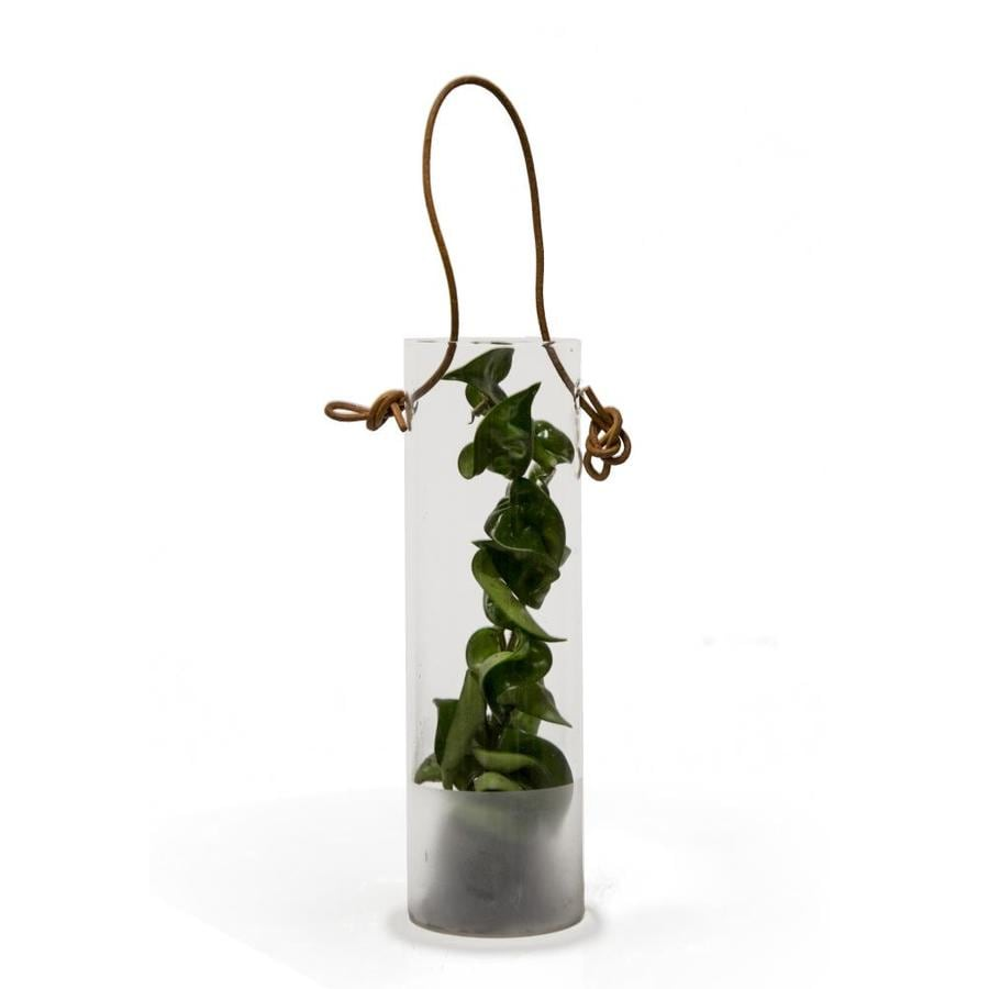 Livetrends Hoya Rope In Glass Pendant At Lowescom
