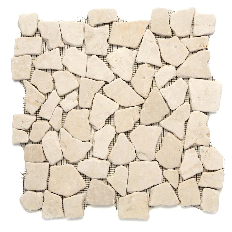 Solistone Indonesian Pebbles 10-Pack Jakarta Moon Mosaic Floor Tile (Common: 12-in x 12-in; Actual: 12-in x 12-in)