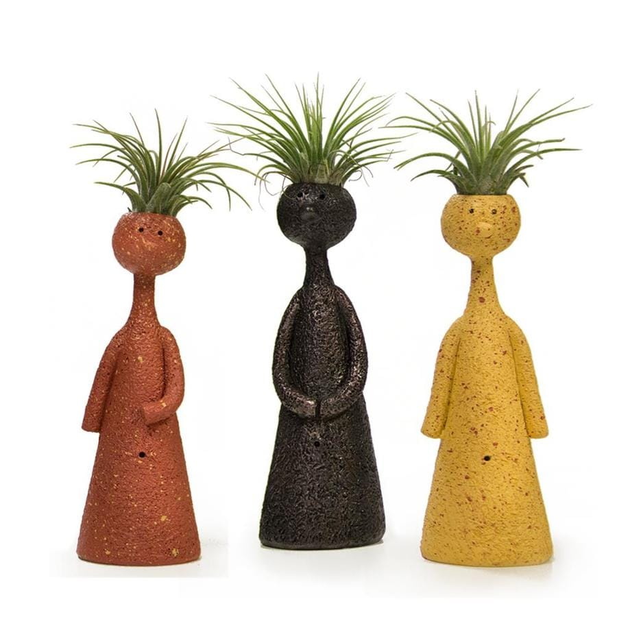 Livetrends 3 Pack Air Plant Mixed In Clay In Planter