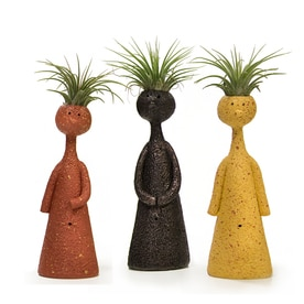 Livetrends 3 Pack Air Plant Mixed In Clay Planter